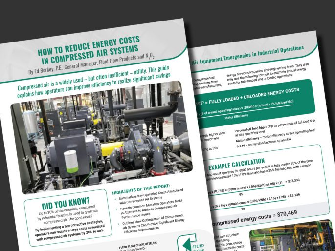 Download Our Free Guide for Ways to Reduce Compressed Air Energy Costs
